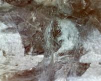 shangfishadditive-crystal1